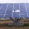 Photon Solar Power Plants